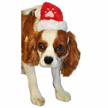 Pluche kerstmuts honden of katten