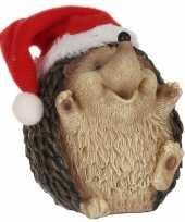 Egel kerstmuts beeldjes kerstbeeldjes bij 10213282