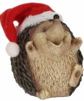 Egel kerstmuts beeldjes kerstbeeldjes bij